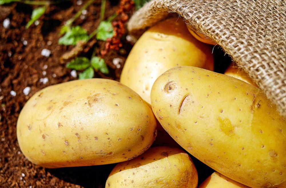tatli-patates