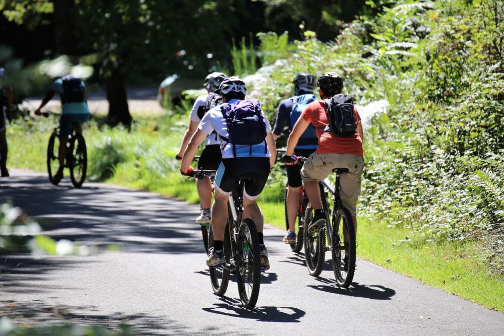 dag-bisiklet