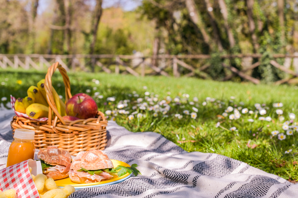 piknik-istanbul