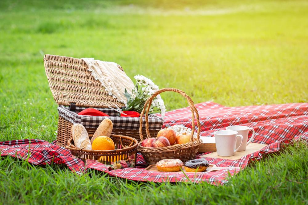 piknik-yerleri