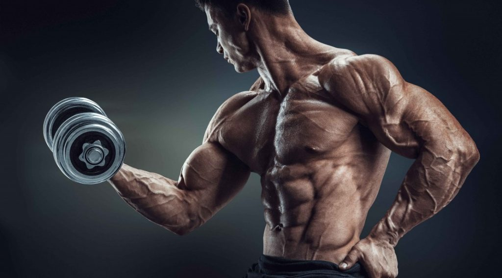 dumbbell-biceps-curl-muscleandfitness