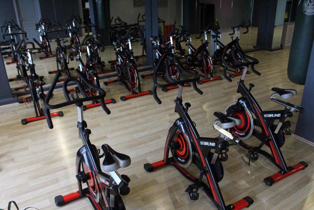 wellness sport